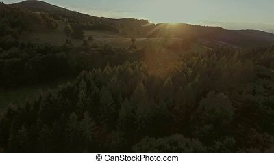 Aerial view of forest, grassland and houses at sunset -...