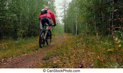 young bicyclist rides through forest during sports...