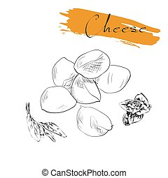 Cheese types. Delicious fresh cheese variet cheese making...