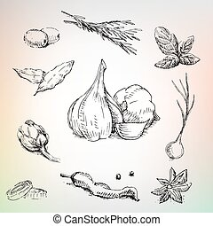 Garlic, onion, olives and herbs. Lot of spices in collection