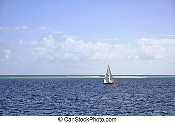 Fraser Island sailing - unmarked sail boat with no visible...