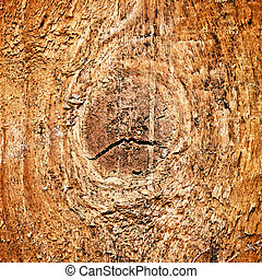 Pinewood Texture Closeup - warm brown pinewood texture,...
