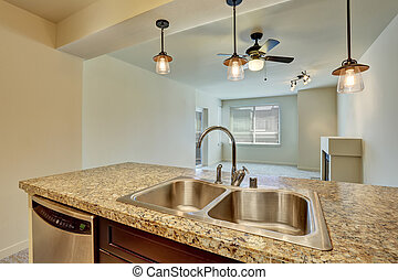Close-up of double sink with granite counter top in modern flat.