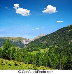 Switzerland Alps - Summer landscape in Switzerland Alps -...