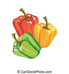 Sweet Paprika Bell Pepper In Three Colors Vector...
