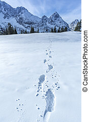 Alpine path of footsteps in the snow - Snowy landscape in...