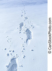 Winter background with footprints in the snow - Elements of...
