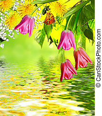Summer landscape with colorful flowers tulips