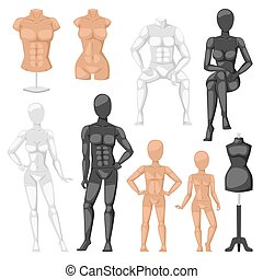 Dummy mannequin model vector illustration - Vector isolated...