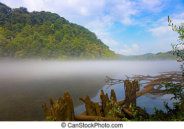 Norris Dam State Park - Fog on the water at Norris Dam State...