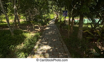Camera Moves along Rocky Path under Tree Shadow in Park