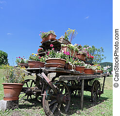 old wooden cart festooned with many pots of flowers in the meado