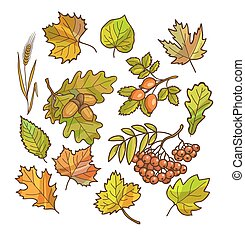 Autumn or fall icon and objects set for design Vector...