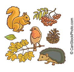 Autumn or fall icon and objects set for design. Forest...