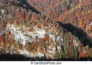 The rock in autumn forest by sunset in Harmanec, Slovakia,...