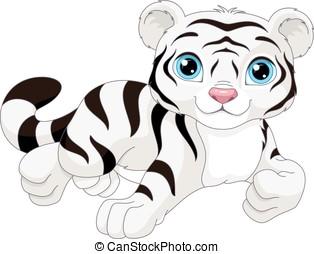 White Tiger - White tiger on a white background