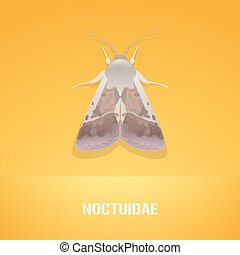 Realistic vector illustration of insect Noctuidae, common...
