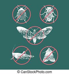 Set of pest insects in prohibition sign vector illustration....