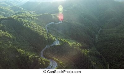 Aerial view of curvy road and forest Sunny day - Aerial view...