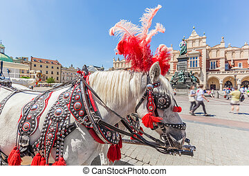 Cracow, Poland. Traditional horse carriage on the main old...
