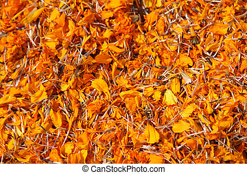 Dried marigold flowers (tagetes)