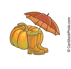 Autumn or fall concept with rain boots - Autumn or fall...