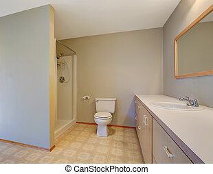 Simplistic bathroom with shower, toilet and vanity cabinet...