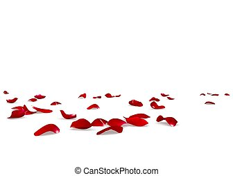 Red rose petals scattered on the floor. Isolated white...