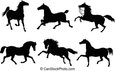Horses in action - Silhouettes of horses in action, on...
