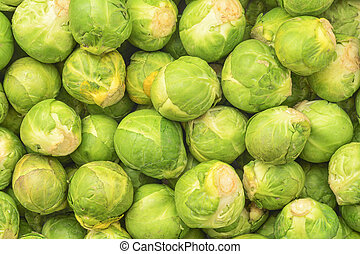 brussel cabbage - fresh natural brussel cabbage background