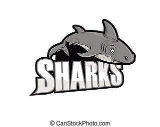 sharks illustration design