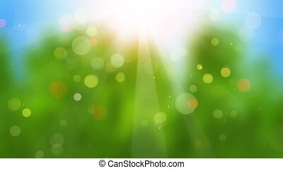 sunbeams on blurry background seamless loop