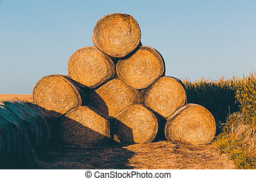 Straw bales on farmland in the sunset