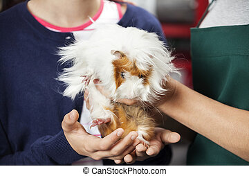 Girl And Saleswoman Holding Cute Guinea Pig