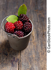 Unripe blackberry in small bucket on wooden table
