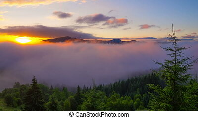 Sunrise in Carpathian Mountains. - Sunrise in Summer...