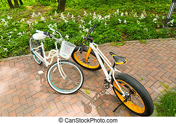Women's and men's bicycles on bricks in a park - Women's and...