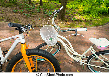 Pair of bikes on bricks in a park - Pair of bikes facing...