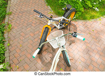 Top view of women's and men's bicycles on bricks in a park -...