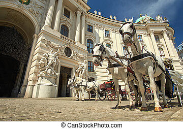 Horses in Vienna, Austria - Horses and carriage tradition,...
