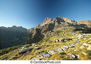 Peak in the Tatra Mountains - The trail in the valley...