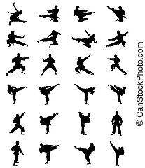 silhouettes of karate