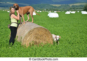 Young woman with her dogs on green meadow, the brown dog...