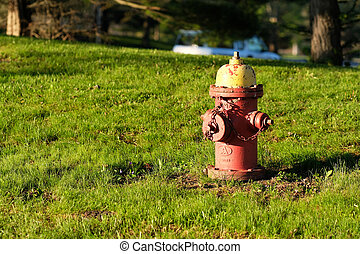 Old red fire hydrant on meadow
