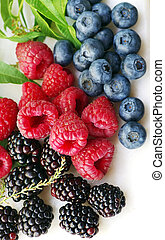 ripe blackberries, raspberries and blueberries on white background