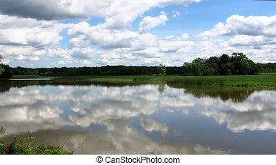 Silent lake near green forest. clouds sky lake reflection...