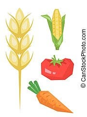 Vegetable products vector illustration - Vegetable products...