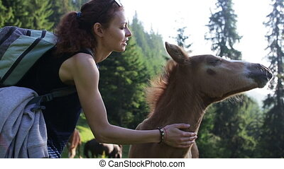 Woman traveler in the mountains playing with foal