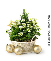 Christmas flower decoration setup in green, gold and white