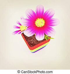 beautiful flower in the colorful pot. 3D illustration....